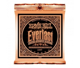Ernie Ball P02548 Everlast Akustik Gitar Teli (Light)