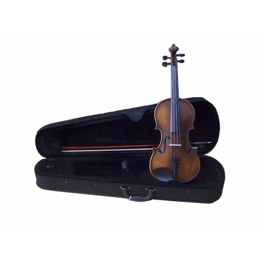 Swing Solak Keman Seti Mat Sv244 En Uygun Fiyatlarla Can Müzik I